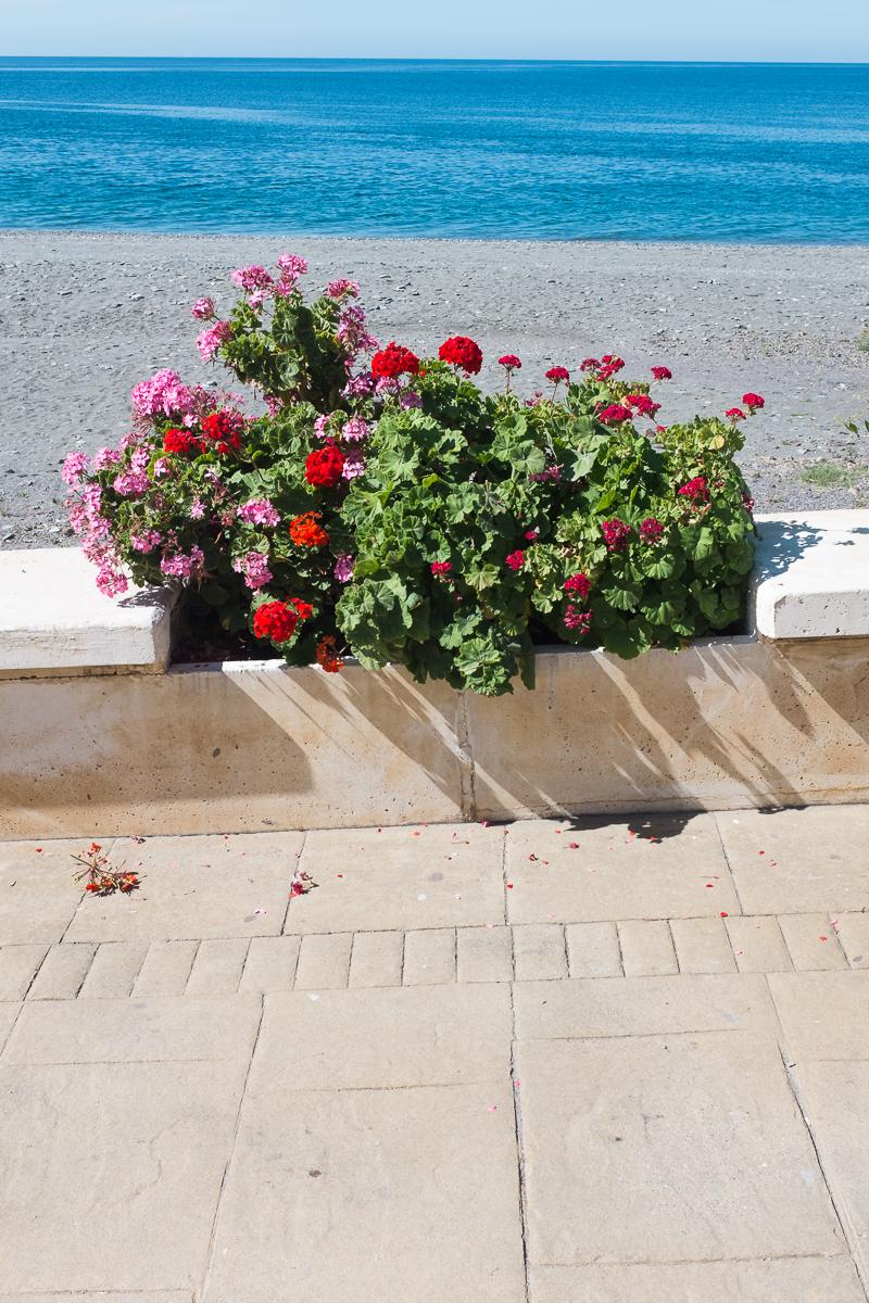 La costa granadina [serie] 08