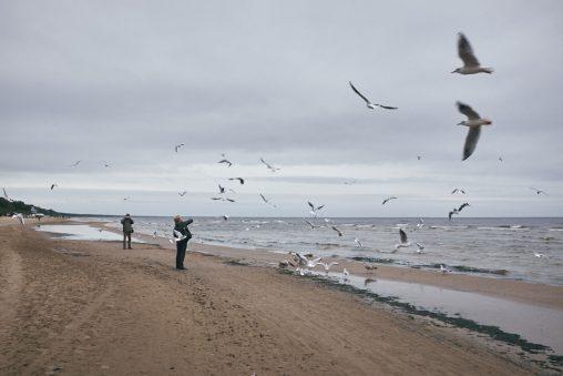 El mar Báltico [serie] 08