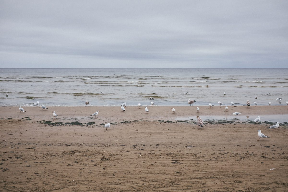 El mar Báltico [serie] 07