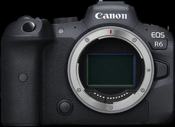 Candidata a cámara perfecta: Canon R6